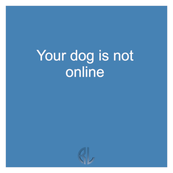 fun_Your_dog_is_not_online